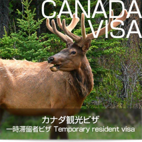 画像1: カナダ観光ビザ(一時滞在者ビザ・Temporary resident visa) (1)